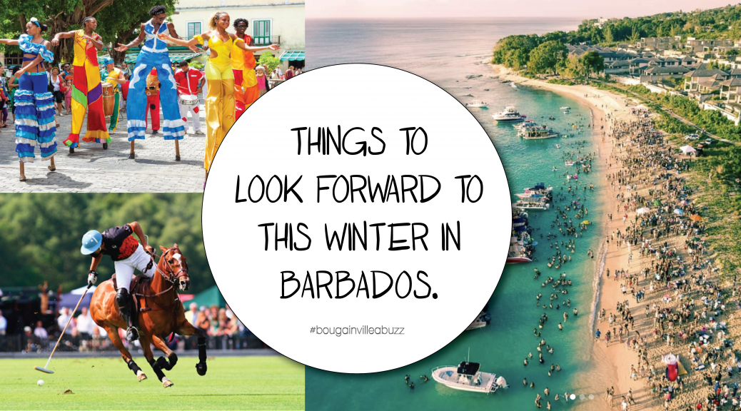 Things to do in Winter in Barbados