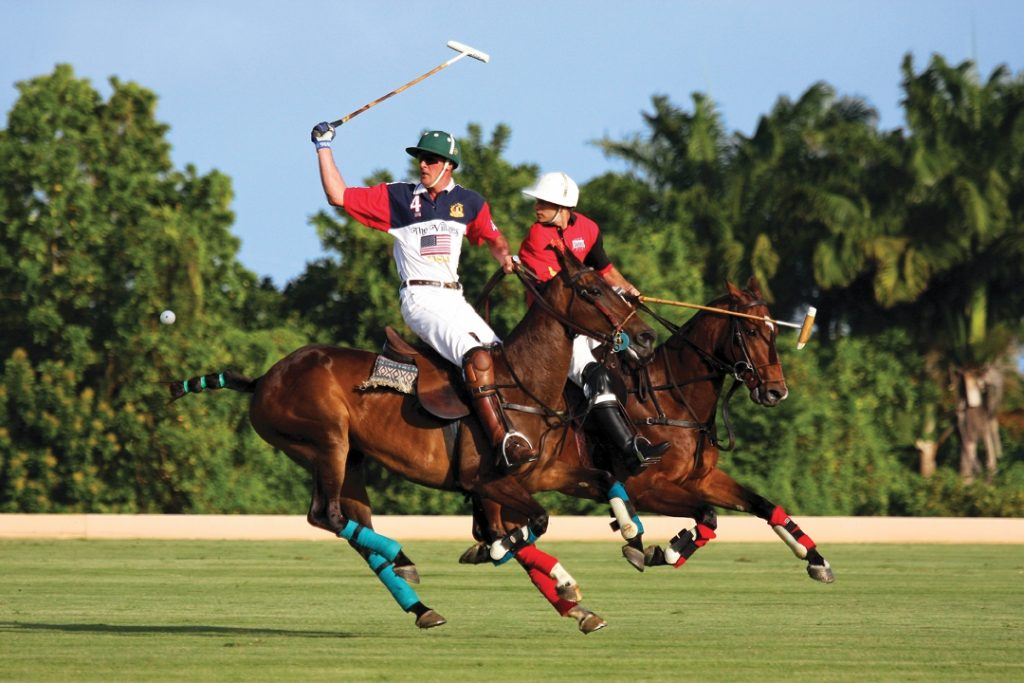 Barbados Polo Season